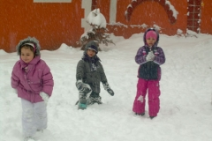 zima2012_13